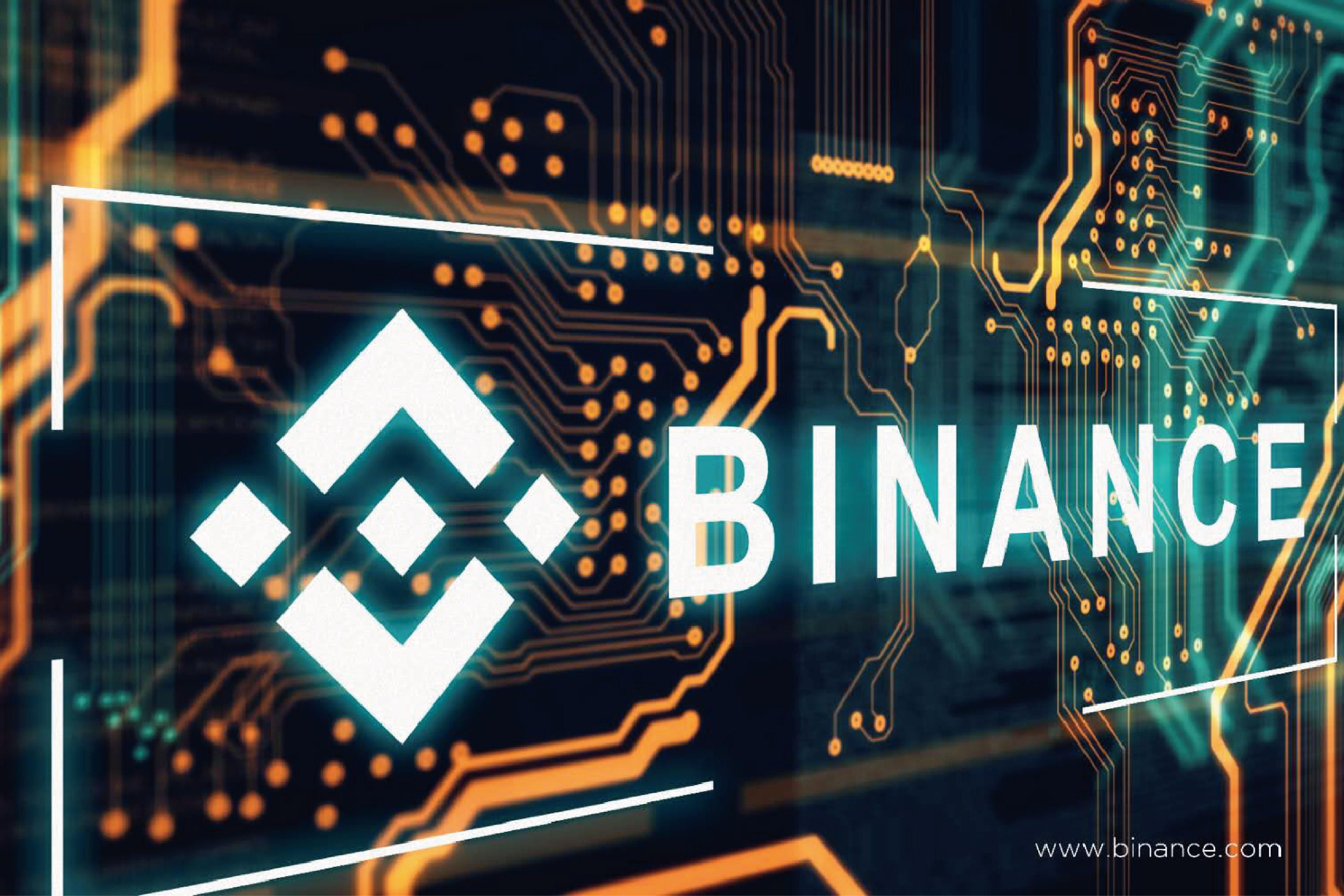 https://www.cryptoworldjournal.com/developers-incorporate-a-mechanism-to-burn-a-part-of-the-fees-on-the-binance-network/#respond
